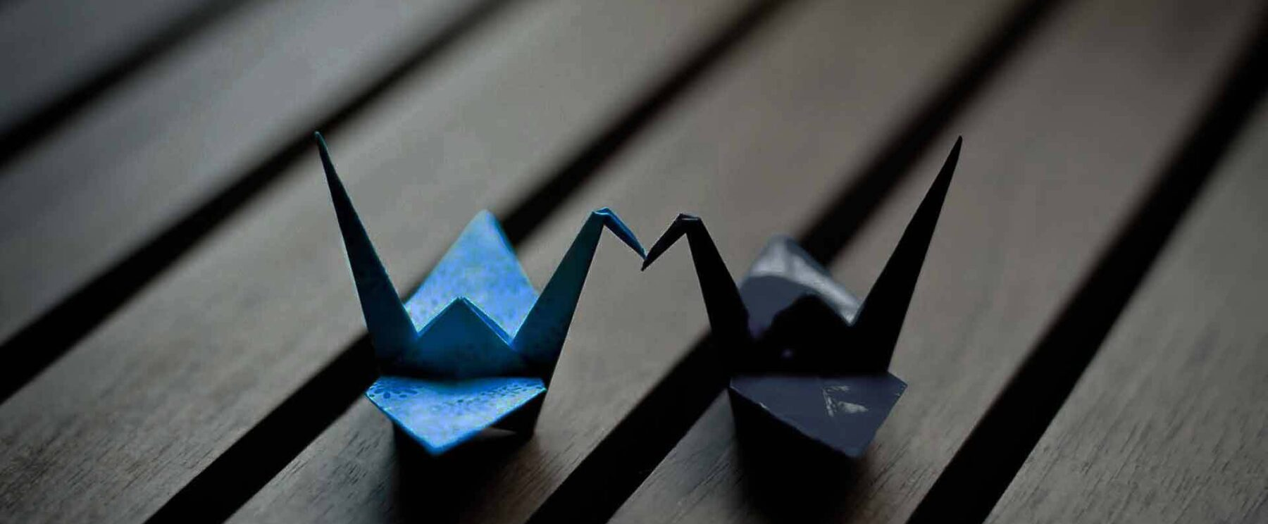 Blue Origami Digital - Agence & Studio